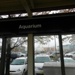 Adventure Aquarium Eingang