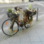 Blumenladen Berlin
