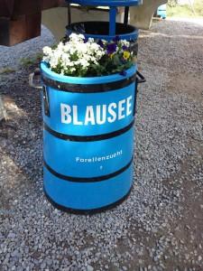 Blausee-10
