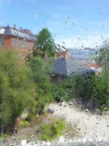 Feuchter Botanischer Garten