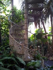 Treppe Botanischer GartenTreppe Botanischer Garten