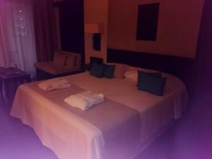 Elysium Resort Zimmer
