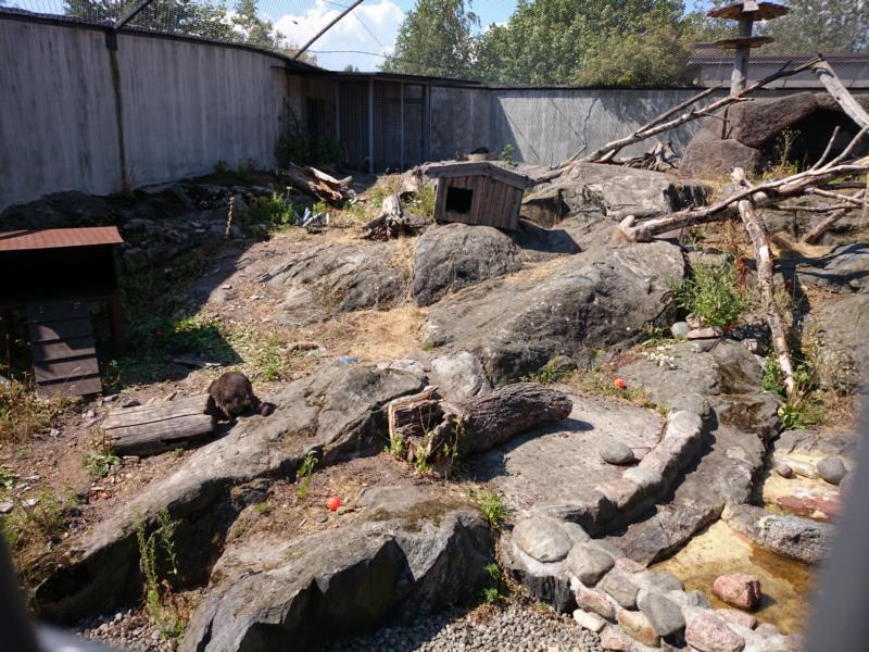 Zoo Helsinki-1