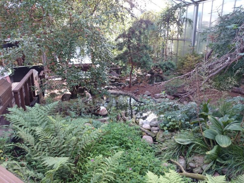 Zoo Helsinki-2