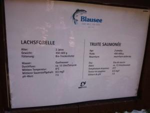 Blausee-11